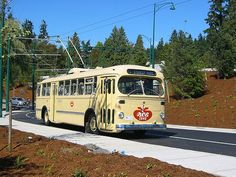 Brill Trolley Bus. Like the ones in Memphis; overhead electrical powered on tires with the rails from even older trolley cars.
