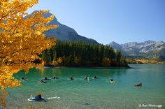 Kayaking on Barrier Lake, Bow Valley Provincial Park, Kananaskis Country