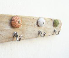 Sea Urchin Towel Holder, Jewelry Organizer Rack, Driftwood, Sea Urchin, Beach Home Decor