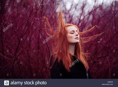 Download this stock image: Woman with long red hair between branches, portrait - E5627E from Alamy's library of millions of high resolution stock photos, illustrations and vectors.
