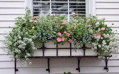 Window Boxes on Nantucket