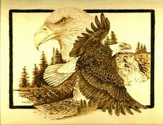 Bald Eagle burned on birch plywood.