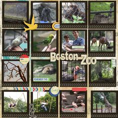Great way to use a lot of pictures plus I like the way she used the additional stickers and cutouts boston zoo - Scrapbook.com