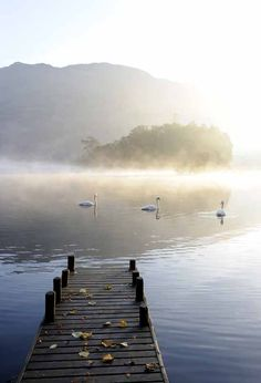 Ullswater, the head of the lake