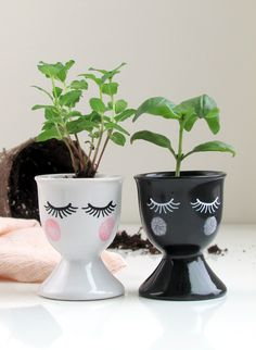 Start your herbs for summer now with these artful egg cup seedling starters. A unique housewarming gift idea!
