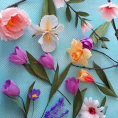 Flora Nordica (@_flora__nordica_) • Фотографије и видео записи на услузи Instagram Flora, Elegant, Plants, Beautiful, Instagram, Jewelry, Classy, Jewlery, Jewerly
