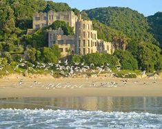 A castle on a beach in South Africa is not a familiar sounding thing. Yet if you're in the Knysna area, take the dirt road at Nekkies down towards the coast, walk the 150 steps marked 'beach' and you will find exactly that: a secluded cove, castles with turrets and classic beach cottages.     Noetzie Beach has remained a favourite destination for adventure seekers in the past and remains so to this day. The pristine and relatively isolated sandy shore is in the Sinclair Nature Area, and is…