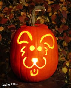 Jack-o-lantern photograph: free picture of a pumpkin carved with a cute doggie face, dog, pooch jack-o-lantern for Halloween simple carving ideas to pattern your jack-o-lantern printable stencil after.