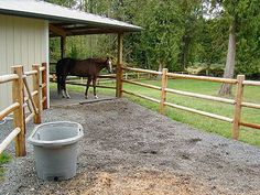 Save Your Pasture – Create A Sacrifice Area. It is called a sacrifice area because you are giving up the use of that small portion of land as a grassy area to benefit the rest of your pastures. Horse Paddock, Horse Stables, Horse Farms, Dream Stables, Barn Layout, Horse Shelter, Classic Equine, Farm Plans, Future Farms