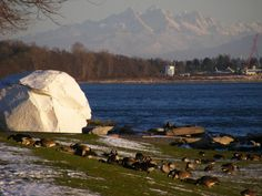 The White Rock in White Rock.You can see the Peace Arch in background marking border between Canada and USA. Shows how close to border White Rock is. Vancouver City, Vancouver Island, Things To Do At Home, O Canada, The Great White, Quebec City, Most Beautiful Cities, Travel Memories, Cold Day