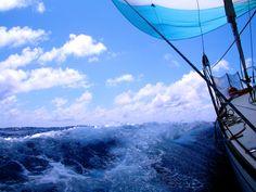 Sail Wallpaper - WallpaperSafari