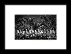 Hawaii Framed Print featuring the photograph Surf Board Fence Maui Hawaii Black…