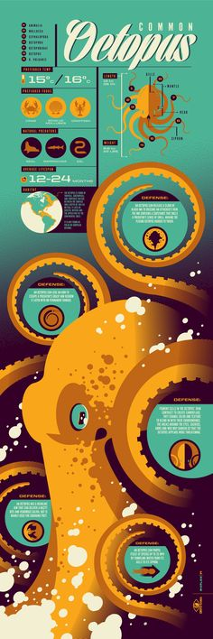 Octopus infographic screenprinted poster by Tom Whalen. Part of inaugural Info-Rama show at Phone Booth Gallery, Web Design, Logo Design, Design Art, Design Trends, Branding Design, Cv Inspiration, Graphic Design Inspiration, Design Graphique, Art Graphique