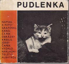 Karel Capek-Pudlenka