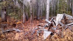 Iverson Cabin remains, historic site sign posted autumn 2013