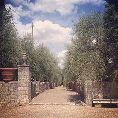 #montestigliano  #tuscanvilla #villaintuscany #agritourismo  #siena #tuscany #destinationweddingtuscany #weddingintuscany #love #friends   Instagram tagged photos - Enjoygram