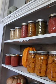 DIY Jelly Cabinet Plans - Free DIY Plans   | rogueengineer.com #Jelly Cabinet #KitchenDIYplans Diy Organizer, Jelly Cabinet, Cabinet Plans, Diy Kitchen, Kitchen Storage, Kitchen Ideas, Kitchen Decor, Do It Yourself Projects, Diy Cabinets