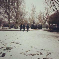 Nieve en Madrid Madrid, Snow, Outdoor, Seasons Of The Year, Winter, Outdoor Games, The Great Outdoors, Garden, Bud