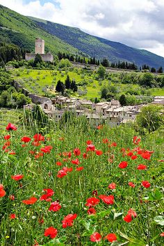 Assisi, Umbria, where San Francesco was born and spent most of his Life