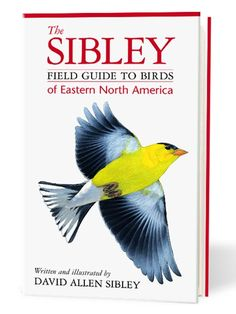This guide (for the Eastern or Western U.S.) is indispensible to most birders. Expert tip: Wait to crack open the book until you've studied a bird carefully and it flies away. - PopularMechanics.com