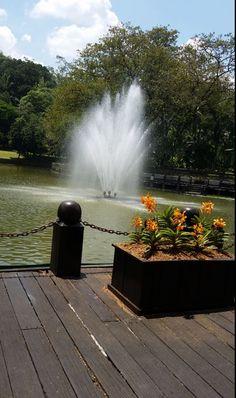 #gardens #kualalumpur #birdpark #asia #KL