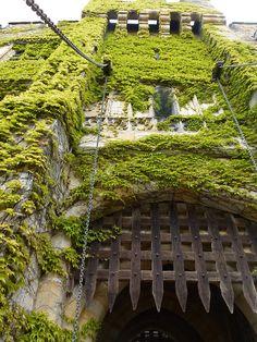 Drawbridge Gate, Hever Castle, Kent (photo via becase)