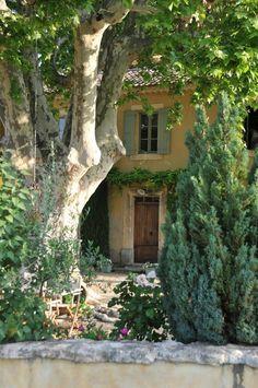 Maison de Provence ... Love the Plane trees