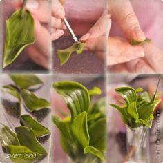 Мастер-класс Лепка: Все покрасочные работы по лилии Фарфор холодный. Фото 2