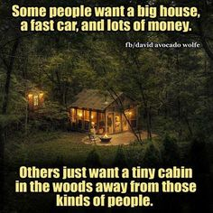 Some people want a big house, a fast car, and lots of money. want a tiny cabin in the woods away from those kinds of people. Kinds Of People, Some People, Lps, True Words, Cabin In The Woods, Survival, Lots Of Money, Big Houses, Lake Houses