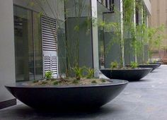 The 2300 Designer Bowl is suitable for use as a planter or as a water-feature. This GRC concrete bowl is made in Australia by Quatro Design. Large Planters, Outdoor Planters, Urban Planters, Landscape Elements, Landscape Design, Container Plants, Container Gardening, Garden Fountains, Garden Pots