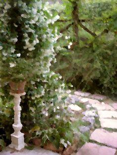 Nuovo post blog Un Giardino In Diretta: Profumi e ricordi