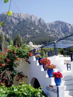 Zia, Kos, Greece...♡