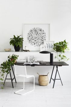 minimal clean home office | mix of greens and white. shelf above desk (love the trestle) framed certificates.