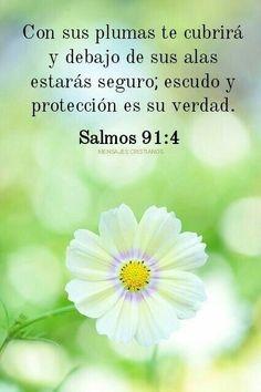 Biblical Verses, Bible Scriptures, Bible Quotes, Bible Promises, Gods Promises, Spanish Inspirational Quotes, Bible Text, Positive Phrases, Bible Verse Wallpaper