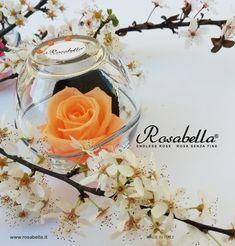 La #natura è miracolosa e come tale si mostra in tutta la sua #bellezza, pazientiamo ancora un po' per goderne a pieno... Benvenuta #Primavera! 💐  #rosabella #rosastabilizzata #rosagioiello #madeinitaly Glass Vase, Decor, Pink, Spring, Decoration, Decorating, Deco