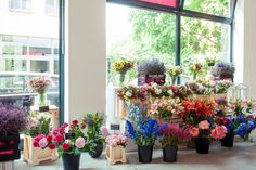 Ihr findet täglich eine große Auswahl an frischen BLOOMEN sowie unsere BLOOMEN DER WOCHE www.bloomydays.de  #flowers #bouquet #decoration #shop #interior