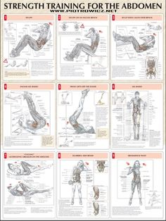Strength Training For The Abdomen - Fitness Healthy Exercise Gym