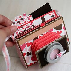 Camera Mini Album - so darn cute!