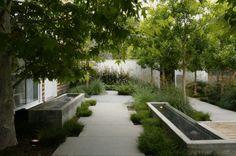 Garden- elevated water features.