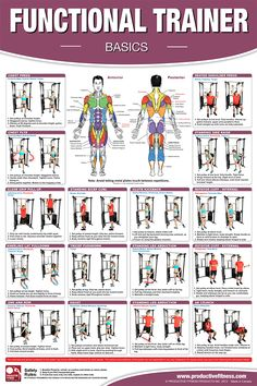 This poster features 16 basic exercises that can be done on a functional trainer gym. Get a great workout for the chest, shoulders, back, triceps, biceps, abdominals, legs and calves. All exercises are clearly explained with step-by-step instructions and descriptive photos. The exercise movements apply to all functional trainer gyms that use two adjustable height pulleys.