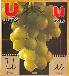 Material educativo para maestros: Abecedario con imagenes reales Fruit, Animal, Board, Index Cards, Activities, Illustrations, Colors, Animaux