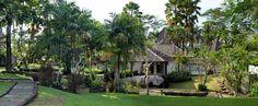Luxury resort life, overlooking to the Jungle!
