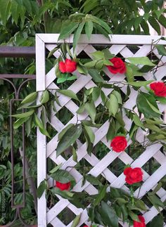 corner view of lattice with flowers and greenery, Make an Easy Colorful Fence with Dollar Store Flowers theboondocksblog.com