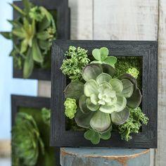 Artificial Succulent Frame Planter
