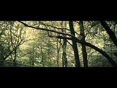 Suma Summarum [2010] Ceo Film | UnlimitedSpaceHD.tv - http://filmovi.ritmovi.com/suma-summarum-2010-ceo-film-unlimitedspacehd-tv/