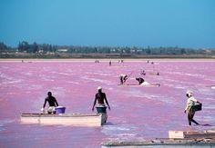 Lago cor-de-rosa. Lago Retba, no Senegal;
