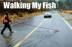 Passeando com o peixe... É que ele não pode fazer suasnecessidadesno tapete da casa!