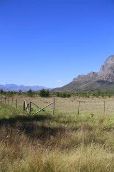 gorgeous mountain range in the middle of the Cape Winelands #Franschoek #wonderland