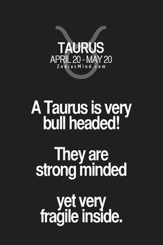 I don't think so! Taurus And Aquarius, Taurus Traits, Astrology Taurus, Zodiac Signs Taurus, Taurus Woman, Taurus And Gemini, Zodiac Mind, Pisces, Taurus Quotes