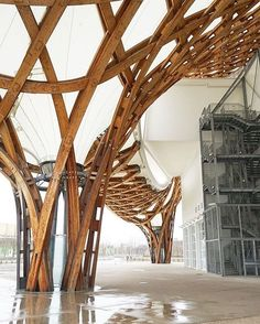 "2,452 Me gusta, 5 comentarios - @next_top_architects en Instagram: ""#next_top_architects * Inside the canopy #shigeruban #pompidou #metz : @jae.jun * snapchat *…"""